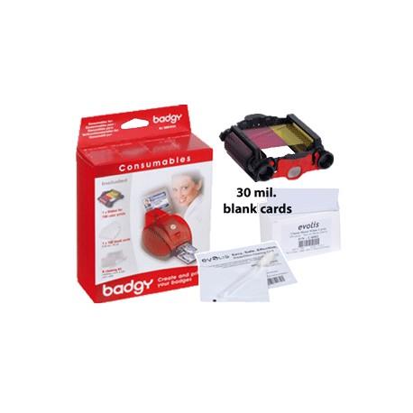 Kit 100 cartes - Ref VBDG105EU