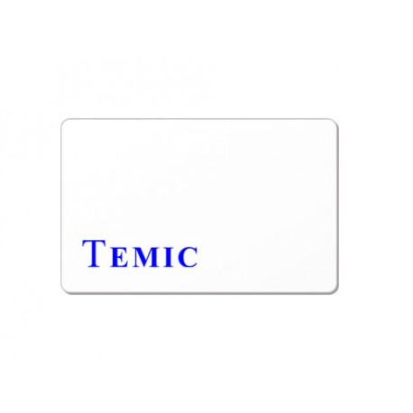 Badge TEMIC